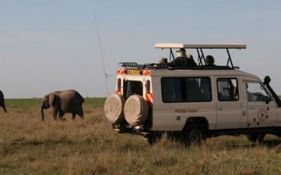 A WEALTH OF SAFARI OPTIONS FROM WILDLIFE SAFARI KENYA